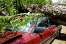 Trees and debris cause major damage during tornadoes