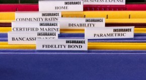 What are the key elements of disability insurance?