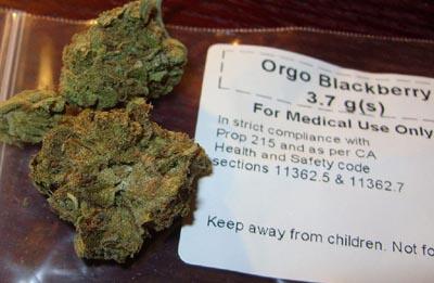 medical marijuana insurance rules